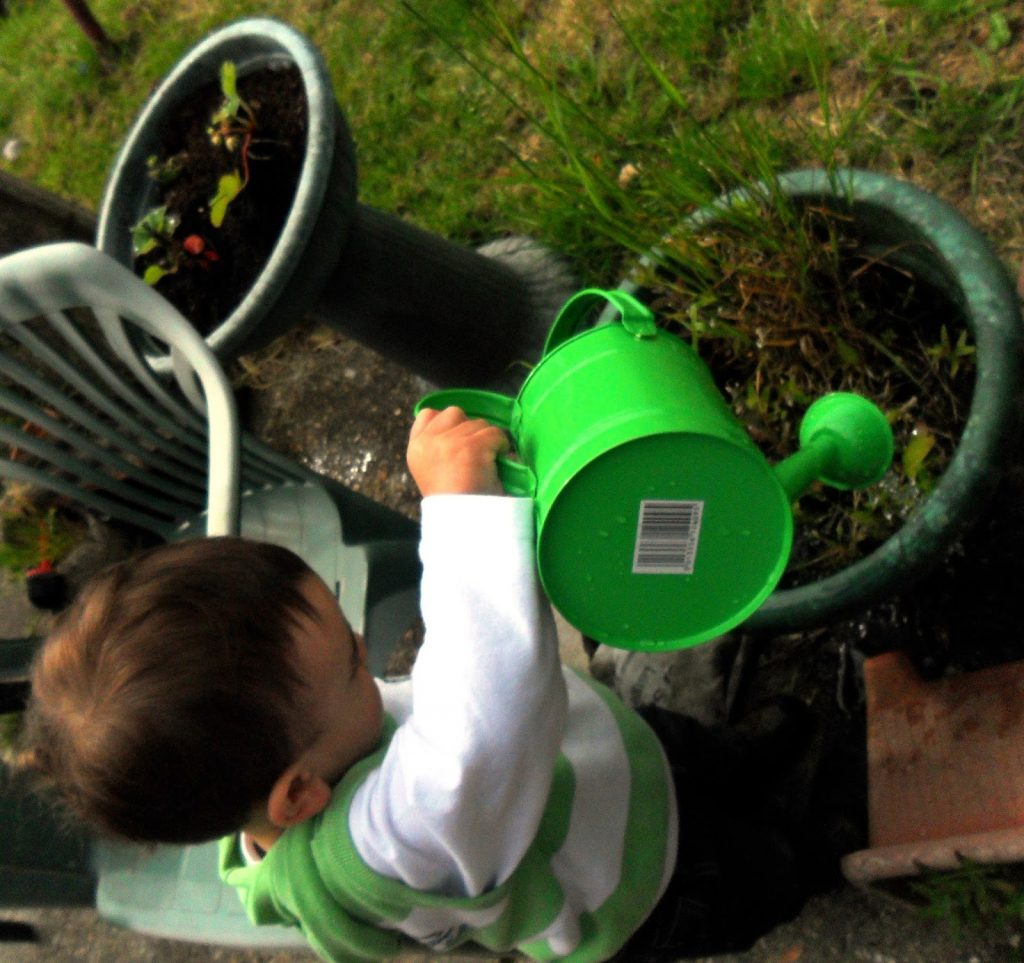 BritMums' #KidsGrowWild Challenge toddler gardening